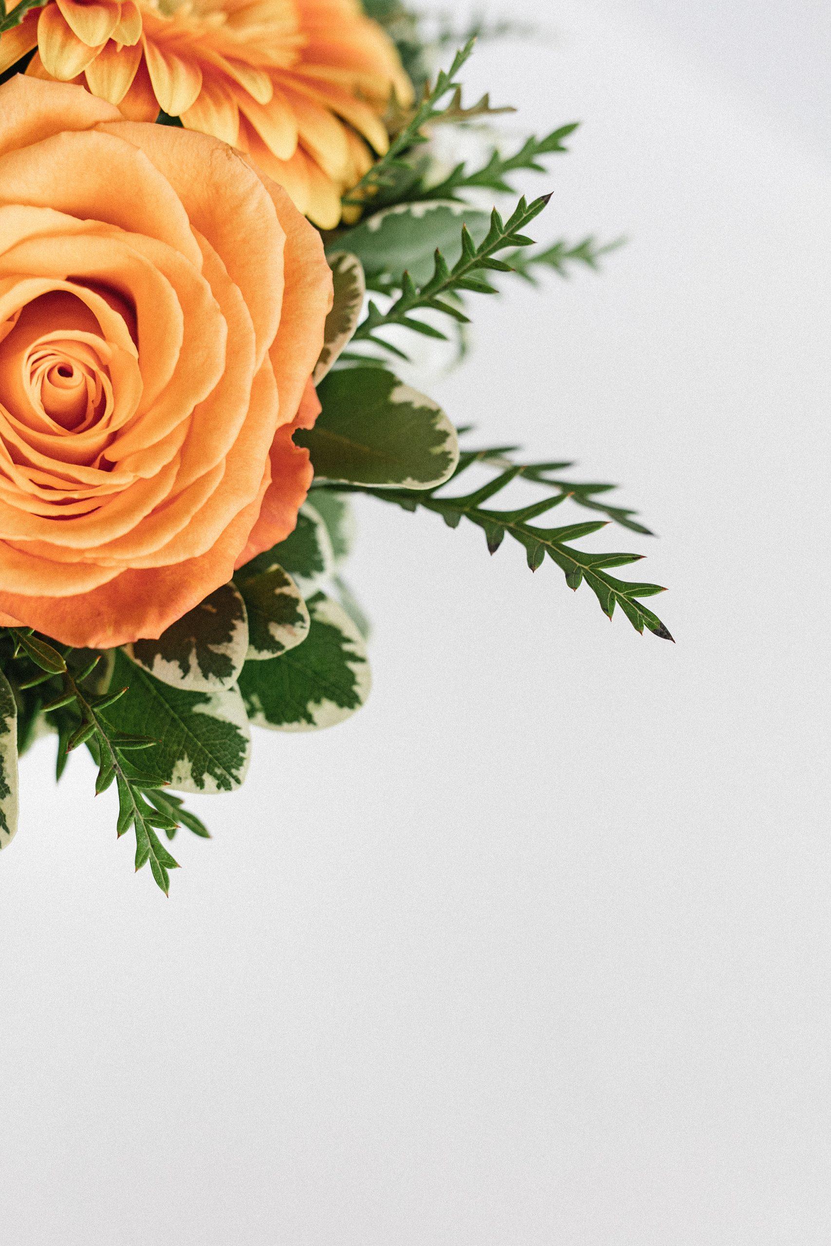 Fleurs pour une naissance