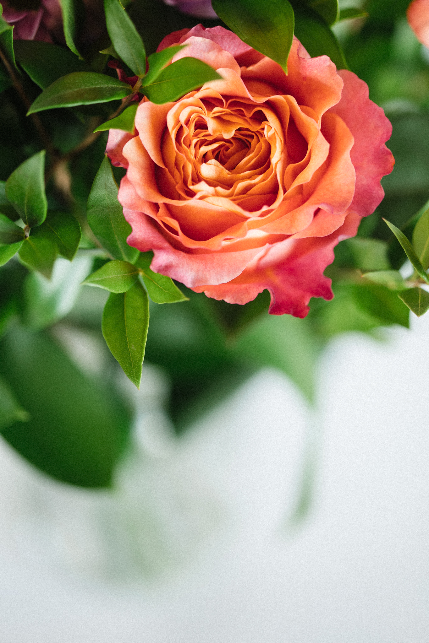 Detail Bouquet d'anniversaire